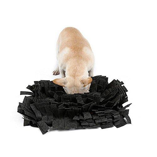 Biback Schnüffelteppich Hunde Hund Riechen Trainieren… | 00784028568123
