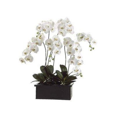 1067cm-vert-blanc-orchide-phalaenopsis-artificielle-dans-pot-en-terre-cuite