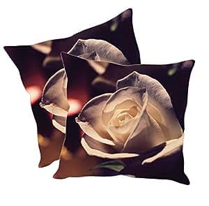 Sleep Nature's Cushion Covers Set of 2 (24x24 inch)