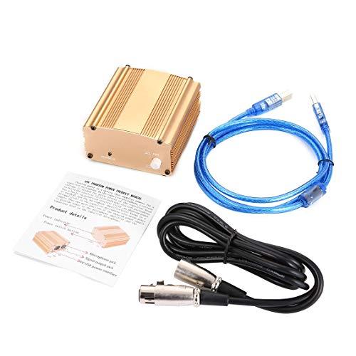 fghdfdhfdgjhh fghdf 48 V USB Phantomspeisung USB2.0 Kabel Dual Stecker Mikrofon Kabel Für Mikromikrofon Kondensator Aufnahmegeräte