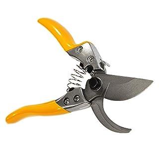 GRÜNTEK Secateurs PHOENIX 200mm, Automatic TEFLON Blade 50mm Bypass | Rose scissors | Pruning shears | Secateurs