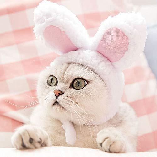 Fighrh Haustier Hut niedlichen Kaninchen Ohr Haustier verkleiden sich Katze Ostern Kostüm Katze lustige niedlichen Stil Headwear verstellbare Größe Katze Bunny Kostüm Weihnachten Ostern Ausrüstung Big