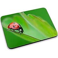 Animali 10009, Coccinella, Mouse Pad Tappetino per