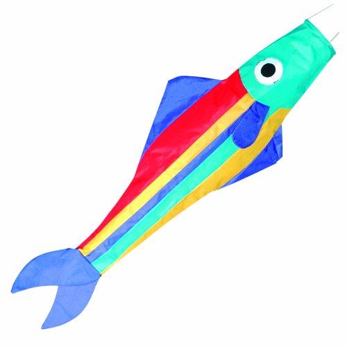 Preisvergleich Produktbild Brookite Regenbogen-Fische Drachen - Englische Anweisungen