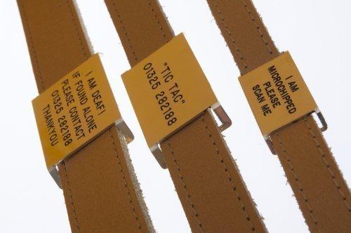Graviert Kragen-Tag Messing - zum anpassen halsbänder aus 22 - 25mm breit -