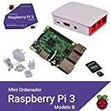 raspberry – mini - - 41kZ4j0B PL - Raspberry – Mini –