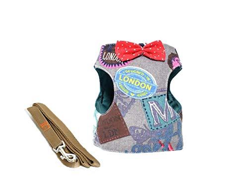 WINNER POP Puppy Mesh Vest Sling, Verstellbarer Pussy Kitten-Laufgurt für besten Komfort und Sicherheit, Denim-Buchstaben, M - Kontrast Stitch Denim
