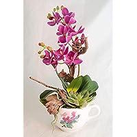 Arreglo floral con una planta de orquídeas en una taza-decoración de mesa con flores artificiales+plantas