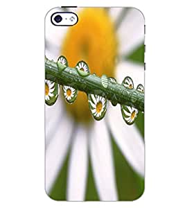 APPLE IPHONE 4S WATER DROPS Back Cover by PRINTSWAG