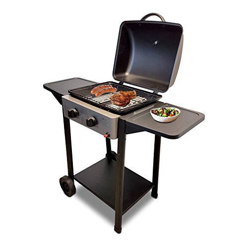 Kibernetik: Gasgrill Mr.Grill Light 2 Brenner, 10795