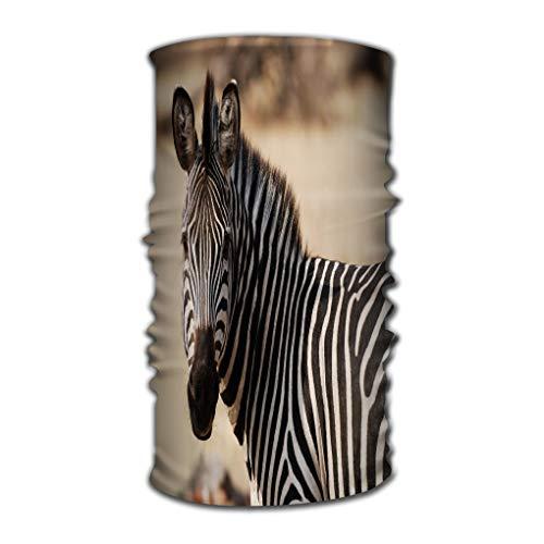 Xunulyn Stirnband Unisex Headbands Elastic Turban Head Wrap Confority Style Hair Band Zebra Looking Left Dreamy