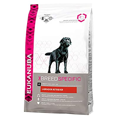 Eukanuba Breed Nutrition Labrador Retriever Dry Food from Eukanuba