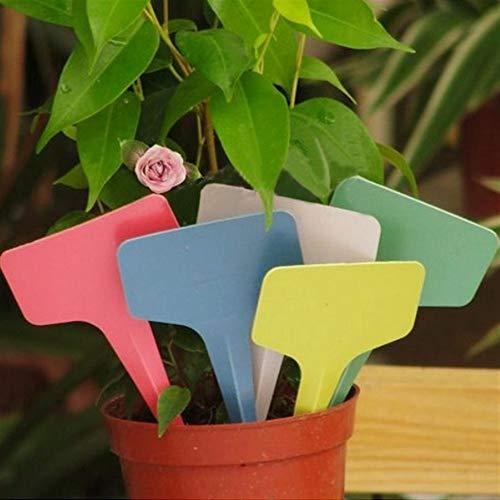 ShireyStore Einfach und langlebig Pflanzensamen Etiketten 100 stücke 6x3 cm Garten Kunststoff Pflanze Blume T-Typ Tags Marker Etiketten