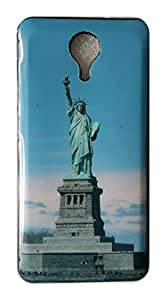 Serebroarts Back Cover for Micromax Canvas Xpress 2 E313 - The Stachu of Liberty Famous Theme