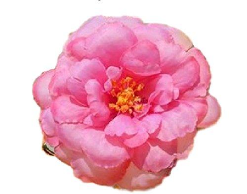 Haarblumen Haarblüten Haarschmuck Haarsprange Blumen Kamille Blüten Damen Accessoires Haarschmuck viele Farben (hellviolett red camellia) (Kamille-blüte)