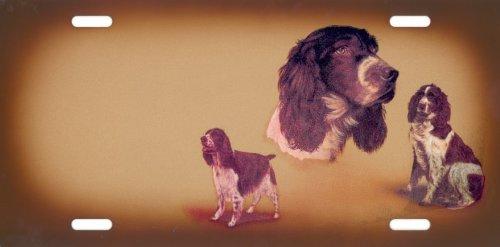 Hundeschilder English Springer Spaniel selbst gestalten und Bedrucken ✓ Hundewarnschilder ✓ Hinweisschild ✓ Verbotsschild ✓ Englischer Springer Spaniel Jagdhund