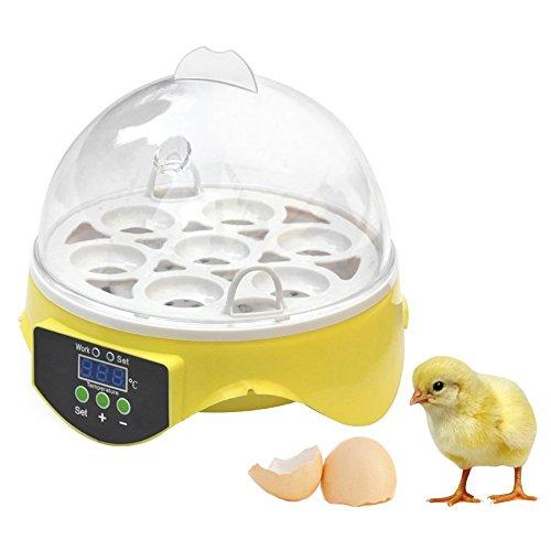 Petacc Incubadora de Huevos Digitales Mini Incubadora de Pollos Hogar Hatchery Avicola para 7 Huevos, Adecuado para Pollo, Patos y Aves, Amarillo