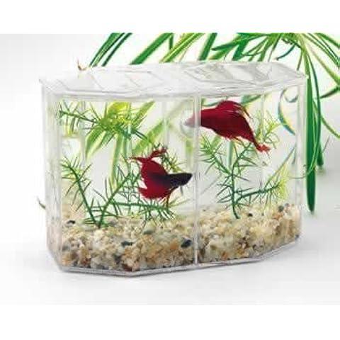 Lee`s Aquarium Betta Hex Dual by Lee's Aquarium