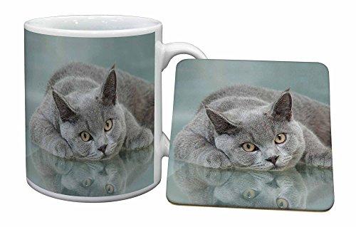 Advanta - Mug Coaster Set Britische Blaue Katze mit auf Glas Becher und Untersetzer Tier Weihnachtsgeschen Mug Coaster Set