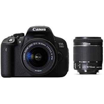 Canon EOS 700D 18MP Digital SLR Camera (Black) with 18-55 STM Lens, 8GB SD  Card, Camera Bag