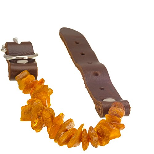 anti-tick-flea-tick-protection-for-cats-or-small-dogs-untreated-natural-baltic-amber-necklace-genuin