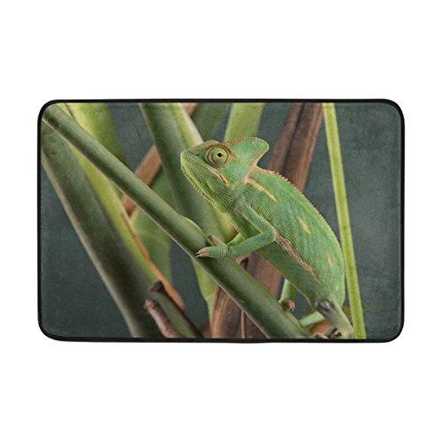 naanle Eingang Fußmatte verschleierten Chamäleon auf Pflanze vor grünen Hintergrund Boden Matte Rutschfeste Fußmatte 23,6von 39,9cm Maschinenwaschbar Polyester Stoff (Chamäleon-hintergrund)