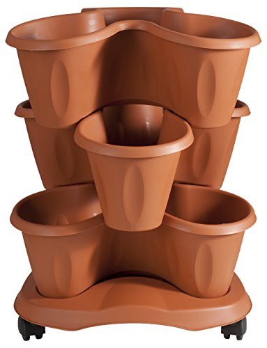 Bama 30015 vaso trifoglio, terracotta