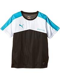 PUMA T-Shirt IT evoTRG Training - Camiseta, color multicolor, talla de: 140