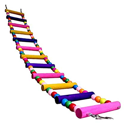 Funny Swing Wooden Mouse Rat Parrot Bird Hamster Ladder Crawling Bridge Toy Shelf Cage Fun And Plus Small Sizes Ladder… 4