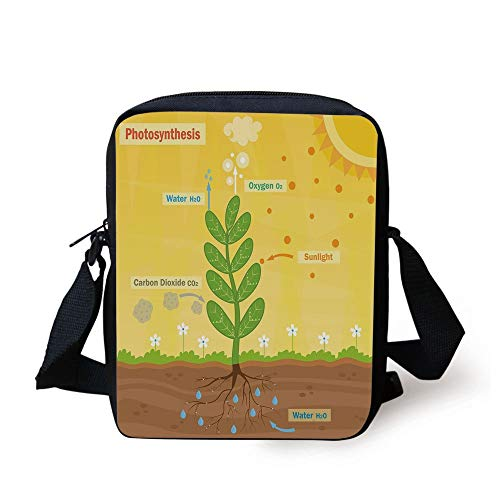 Educational,Cartoon Photosynthesis Oxygen Carbon Dioxide Sunlight and Water Decorative,Earth Yellow Green Umber Print Kids Crossbody Messenger Bag Purse