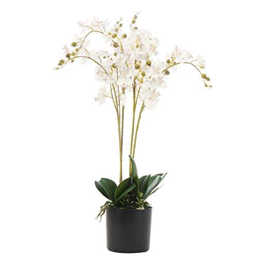 Leaf Kunstpflanze Orchidee mit 2 Stielen, 50 cm, Weiß
