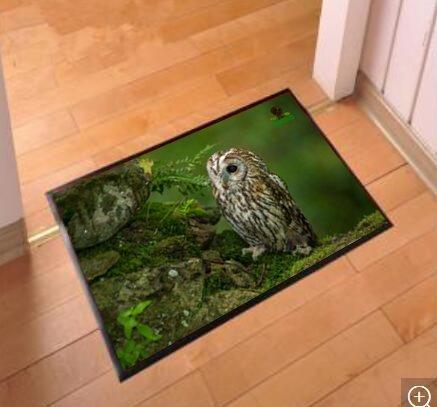 Design-Fußmatte 60 x 40 cm (Eule)