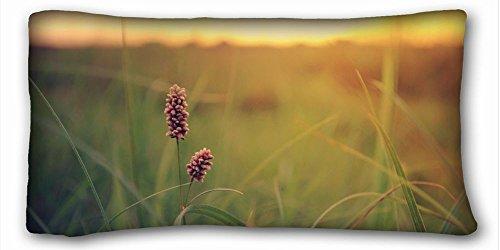 Custom Baumwolle & Polyester Weich (Tiere Katze Olds Dream Liegen) DIY Kissenbezug Größe 50,8x 91,4cm geeignet für king-bed pc-orange-23706, Polyester-Mischgewebe, Muster 3, European