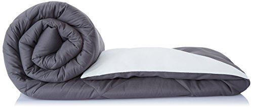 Solimo Microfibre Reversible Comforter, Double (Pale Grey & Steel Grey, 200 GSM)