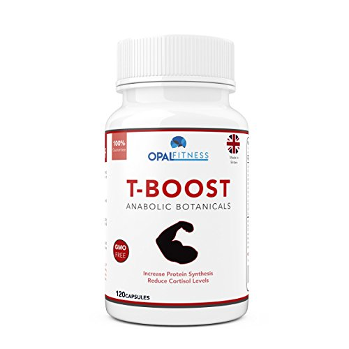 Testosterone Boosters By OSHUNsport | Anabolic Performance Enhancer & Libido Booster | Botanical Testosterone Booster for Men | Contains 10 Potent Ingredients to Reduce Cortisol and Stress Levels Including Maca Root, Ginkgo Biloba & Korean Ginseng | 120 Capsules Test