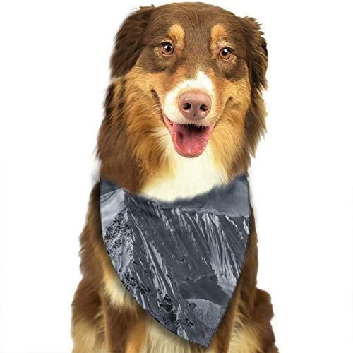 Sdltkhy from The Ends of The Earth Fashion Dog Bandana Haustierzubehör Easy Wash Scarf Zebra Fringe