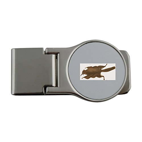 Preisvergleich Produktbild Metal money clip with The image of the back view of Pteromys momonga or Japanese lesser flying squirrel in English. This image is from ja.wikipedia.org wiki E3 83 A2 E3 83 A2 E3 83 B3 E3 82 AC media F