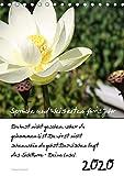 Sprüche und Weisheiten für´ s Jahr (Tischkalender 2020 DIN A5 hoch): Blumen und Sprüche (Planer, 14 Seiten ) (CALVENDO Natur)