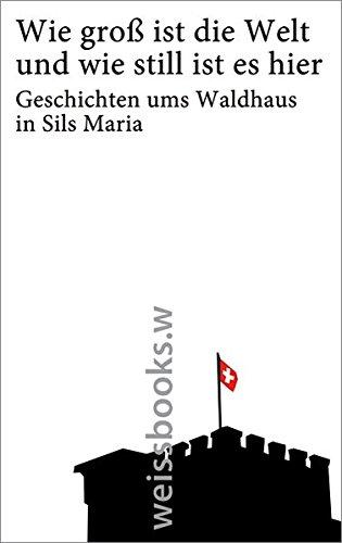 Preisvergleich Produktbild Wie groß ist die Welt und wie still ist es hier: Geschichten ums Waldhaus in Sils Maria