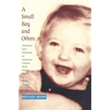A Small Boy and Others: Imitation and Initiation in American Culture from Henry James to Andy Warhol (Series Q)