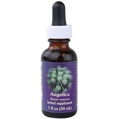 Flower Essence FES Quintessentials Angelica Supplement Dropper -- 1 fl