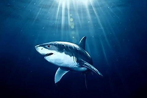 Fond marin Requin Diamant Peinture 5D DIY Plein Percer Artisanat Animal Résine Broderie Rhinestone Coller Croix Maille Kits Diamant Mosaïque Autocollant Toile Pour Bureau Mur Décoration , 50*33 cm