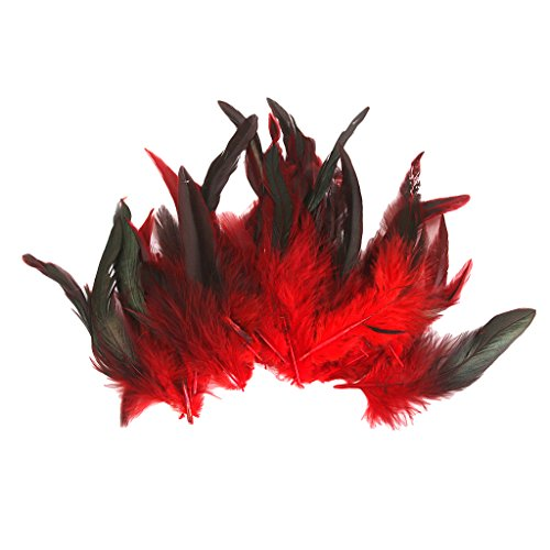 Rote Feder Kostüm - Sharplace 50 Stück Hahnenfedern Flügelfedern Hahn