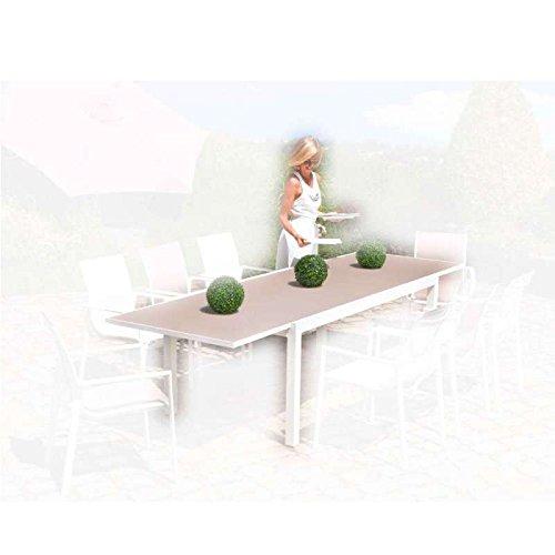 Table valencia alu/verre 190/300x100cm