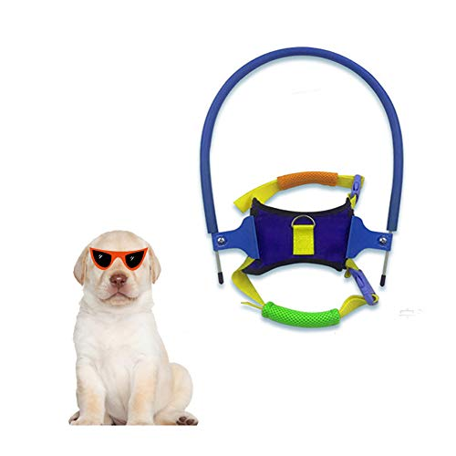 Smilikee Pet Safe Halo Auffanggurt für Blinde Hunde Anti-Kollisions-Ring für Blinde Haustiere Scorpio Cataract Animal Protection Circle Guide Auffanggurt für Hunde