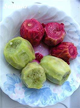 100 semillas de Opuntia piezas raras higo chumbo de dulce de alta nutritous cactus comestible frutas sanas planta suculenta Bonsait del jardín de flores