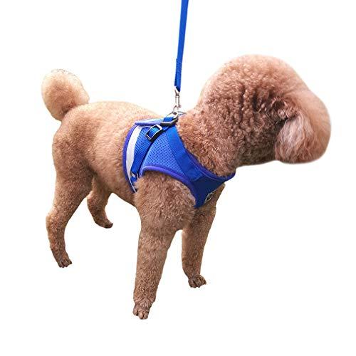 QiCheng&LYS Chaleco de Viaje Regular de Malla Transpirable con Cinturón de Seguridad para Perros y Gatos Chaleco de Seguridad para Mascotas (Azul, S)