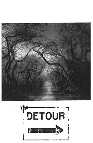 the-detour-english-edition