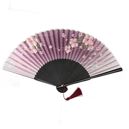 ouly Seide fan, chinesisch Fan, Chinesischer Stil, Fan Box Schutz, Japan Fan mehrere Farben (braun)