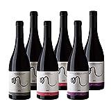 Vinos Manuscrito Pack 6 Botellas - Tinto (2 Tempranillo 100% Ribera del Duero- 2 Graciano 100%- 2 Mencia 100%)